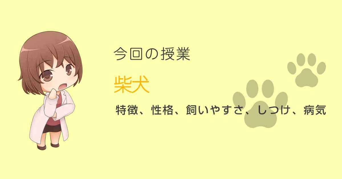 柴犬特徴・性格
