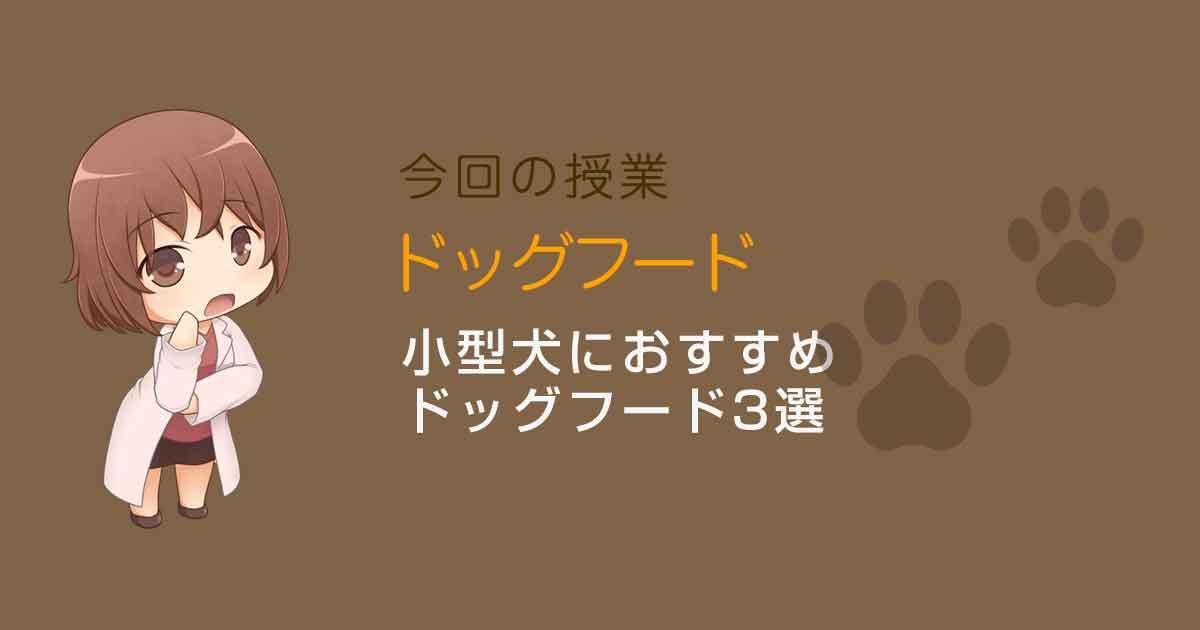 小型犬におすすめのドッグフード3選