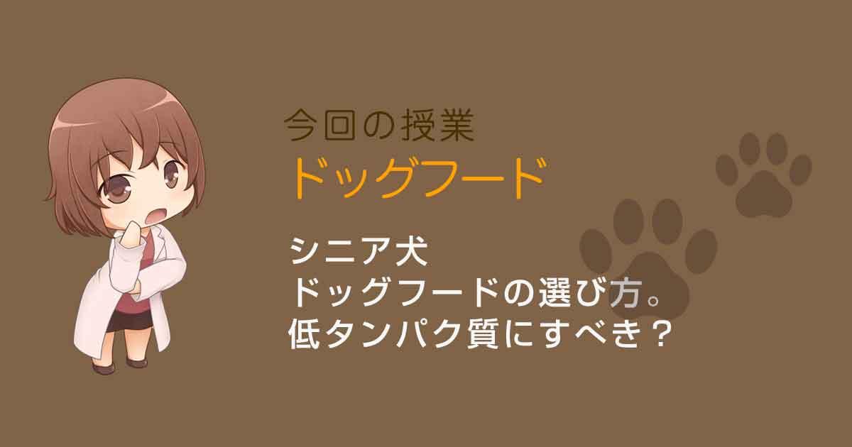 シニア犬のドッグフードの選び方